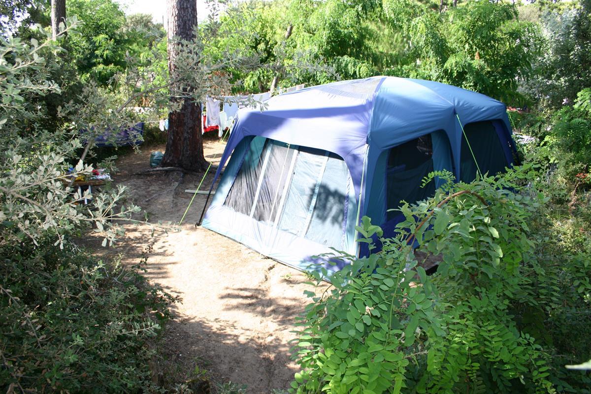 staanplaats tent pins staanplaatsen op camping bij royan charente maritime camping bois soleil. Black Bedroom Furniture Sets. Home Design Ideas